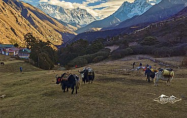 Everest base camp helicopter tour Image 4