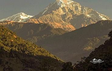 Machhapuchhre 'fishtail' (6,993m)