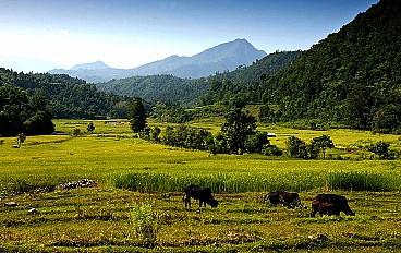 Lower Manaslu Trekking Image 3